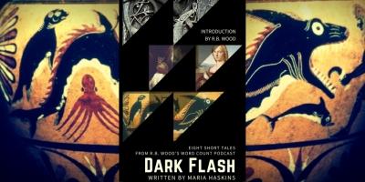 darkflashtwitt