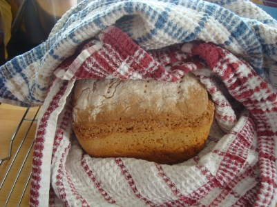 bread 001